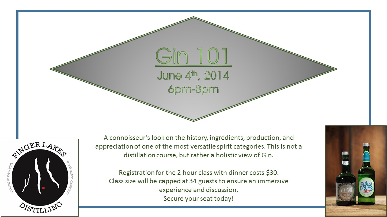 Gin 101 Graphic